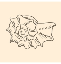 Spiral seashell vector