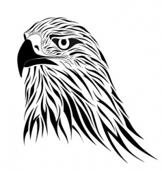 hawk tattoo vector image