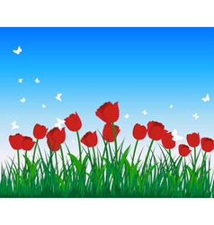 Tulip field vector