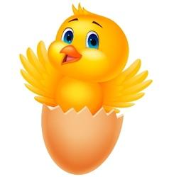 Cracked egg with cute bird cartoon inside vector image vector image