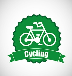 cycling sport design vector image