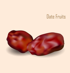 Date fruits vector