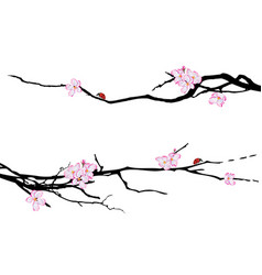 set of spring dividers vector image vector image