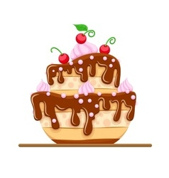 Sponge cake dessert with sweet vector image