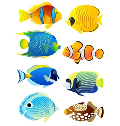 Set of tropical fish vector image