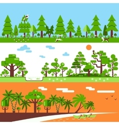 Coniferous deciduous tropical forest banners vector