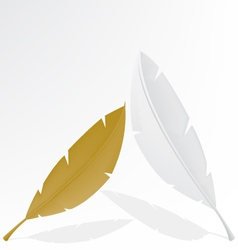 feather gold and white vector image vector image