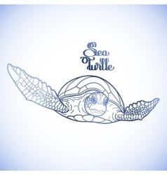 Hawksbill sea turtle vector