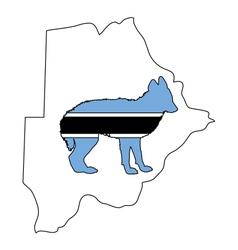 Jackal from botswana vector