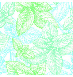 mint seamless pattern vector image