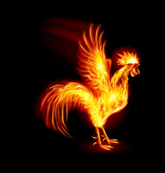 Silhouette of red cock fire rooster symbol of the vector
