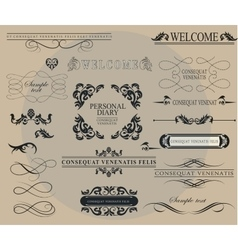 Set of calligraphic elements for design vector