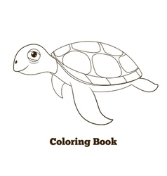 Coloring book turtle sea animal vector