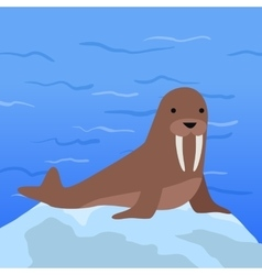 Funny Walrus vector image