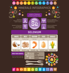 Selenium mineral supplement rich food icons vector