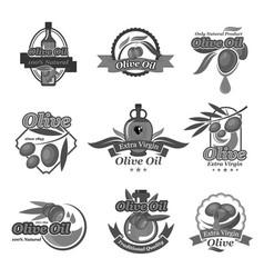 olive oil label and badges set design vector image vector image