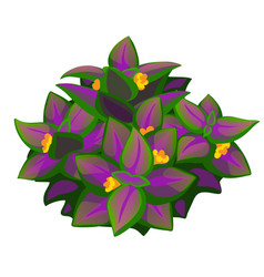 Unusual purple flower plant isolated vector