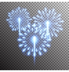 Isolated realistic fireworks vector