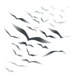 Flock of birds on a white background vector