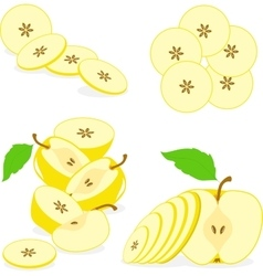 Apple slices collection of vector