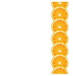 Seamless decorative border of orange slice vector