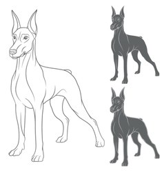 Set of with Doberman vector image vector image