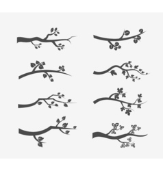 tree branches silhouette with leaves vector image