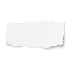 White paper tear placed on white background vector
