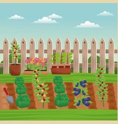 Vegetable field farm fence vector