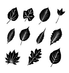 leaf black silhouette icon set vector image