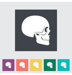 Anotomy skull vector image vector image