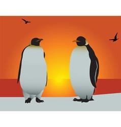 antarctica penguins vector image