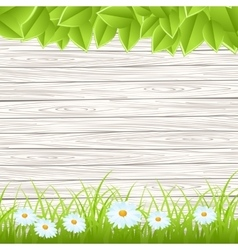 wall with grass vector image vector image