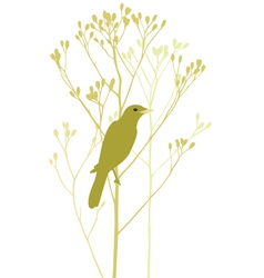 bird is sitting in tree vector image vector image