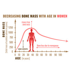 bone mass decreasing vector image