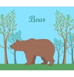 Funny Brown Bear vector image