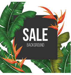 Sale background with tropical vector