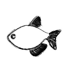 Monochrome blurred line contour with fish vector