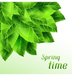 Spring time with bunch of green vector