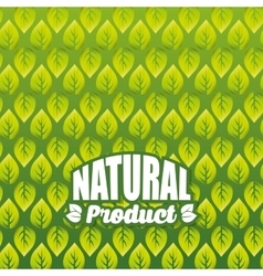 Organic and natural product background vector