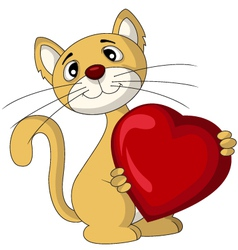 Cat with love heart vector