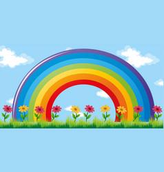 Colorful rainbow in garden vector
