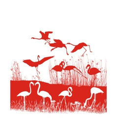 Red flamingos on the shore vector