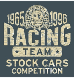 Stock car racing team vector image