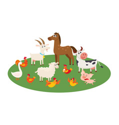 Farm animals grazing in the pasture grazing on vector