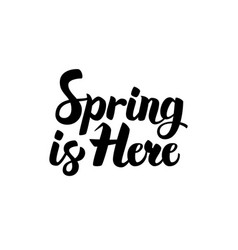 Spring is here lettering vector