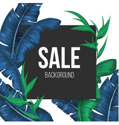 Sale promo banner background with exotic plants vector