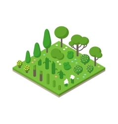 Isometric green tree set on field vector image