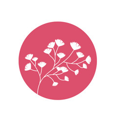 flower decorative natural icon vector image