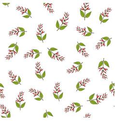 Mirto sage medicinal plant seamless pattern vector
